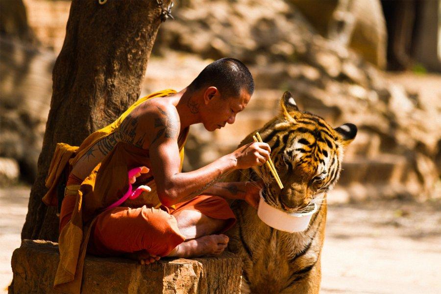 Горящие туры в Тайланд из Астаны с 1 апреля по 29 апреля на 8-16 дней
