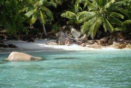 Новое направление-Сейшельские острова,туры с перелетом из Астаны и Алматы!