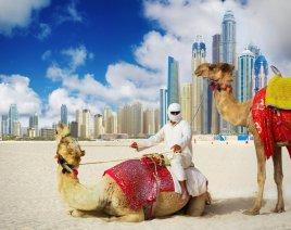 Топ 10 популярных пляжных отелей в ОАЭ!!!