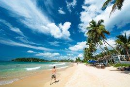 Топ-10 самых популярных отелей о. Шри-Ланка с вылетом из Алматы!