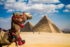 Туры в Египет с отличными скидками! Прямой рейс Алматы-Шарм-Эль-Шейх!
