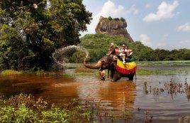 Горящие туры на Шри-Ланку!