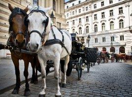 Экскурсионный тур: Прага - Вена -Дрезден