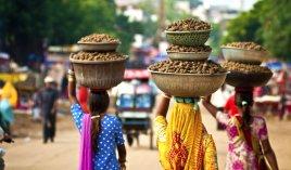 Индия - экономичный двухнедельный отдых!