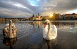 Весенняя Прага- сниженные цены на март из Астаны!
