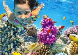 Лучшие отели в Египте на начало летних каникул с максимальными скидками!