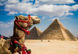 Египет из Астаны по раннему бронированию!