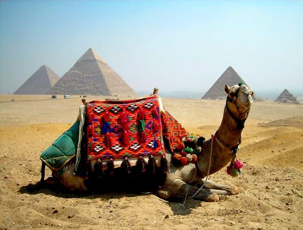 ВАУ! ОТЛИЧНАЯ НОВОСТЬ: Дополнительные рейсы в ЕГИПЕТ из Астаны на 7/14 ночей